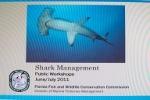 Florida Shark Management – Public Workshops June/July 2011