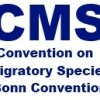 CMS: Proposal for Inclusion of Giant Manta Ray in Appendix I and II