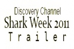 Shark Week 2011: Shark Fishing Banned in Honduras, Bahamas