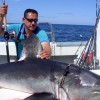 Fisherman lands big Shark off Donegal Ireland