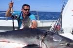 Fisherman lands big Shark off Donegal Ireland