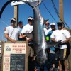 Snug Harbor Shark Tournament 2011
