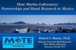 Mote Marine Laboratory: Partnerships and Shark Research in Mexico