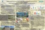 Habitat Preference of Juvenile Lemon Sharks (Negaprion brevirostris) in South Eleuthera, Bahamas