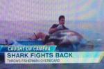 Shark Video Caught on Tape: Kayak Fishermen Battle Thresher Shark off California