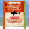 Shark bitten body found in Brazil