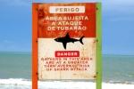 Shark bitten body found in Brazil