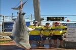 260.8kg tiger shark catch sets a new world record