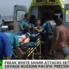 Shark attacks shock Russia