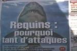 Reunion pays tribute to shark attack victim Mathieu Schiller