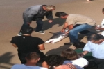 Great White Shark caught and released in Manhattan Beach