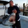 Big Mako Shark caught off Mississippi