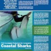 Florida Fishing Regulation for 2012