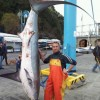 Fox Shark caught in north-western Italy