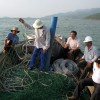 First Anti Shark Nets Installed in Vietnam
