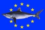 European Commission legislates only to please NGOs, says Spanish MEP