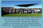 Australia: Shark fishers focus on sustainability