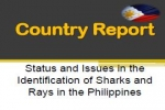 Country Report on Sharks and Rays in the Philippines