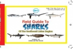 Field Guide To Sharks of the Southeast Asian Region