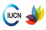 Shark Motion presented to the IUCN World Conservation Congress 2012