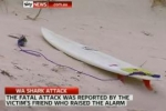 News Video: Surfer in Australia killed in Shark Attack