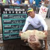 New Maryland State Record Scalloped Hammerhead Shark