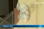 News Video: Shark Attacks Surfer in Streaky Bay SA