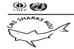 CMS Sharks Memorandum of Understanding