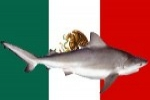 Mexico bans fishing for Great white sharks