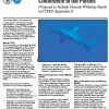 US FWS Factsheet: Oceanic Whitetip Shark CITES Proposal