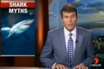 Shark myths exposed