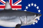 Cook Islands Creates Sanctuary for Sharks