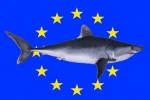 European Commission adopts report on the implementation of the updated shark finning Regulation
