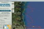Massive White Shark appears off Florida coast