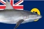 New measures to combat WA shark risks