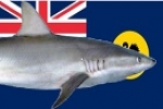 Western Australia: More patrols, second shark barrier for South-West