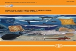 FAO Catalogue: Sharks, batoids, and chimaeras of the North Atlantic