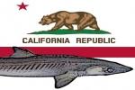 California: Fishing Industry Joins Legal Battle Against Shark Fin Ban