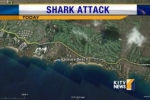 Shark attack causes Maui beach closure