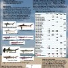 Species composition of sharks in Southeast Asian region