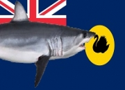 $8 million boost for WA's scientific shark hazard mitigation strategy