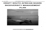 South Africa: Draft Shark Management Plan Unveiled