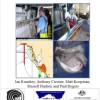 SA Gummy Shark Fishery: Trials of longlines to mitigate captures of Australian sea lion