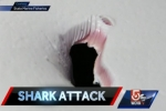WCVB News: Frantic 911 call details shark attack in Plymouth Mass.