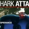 7NEWS: Esperance surfer remains critical after shark attack
