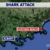 9NEWS: Fatal Shark Attack at Cheynes Beach WA