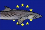 EU plans to ease regulations for dogfish imports