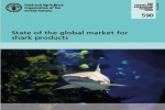FAO Report: State of the global market for shark products