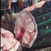 Video: Vendors saw giant whale shark into pieces for market sale