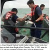 Texas: Coast Guard saves 50 sharks caught illegally off South Padre Island